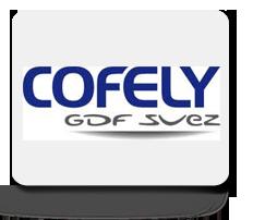 Cofely Sdf Suez